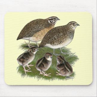 Coturnix Quail Family Mouse Pad