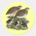 Coturnix Quail Family Stickers