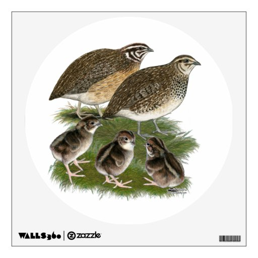 Coturnix Quail Family Wall Decal