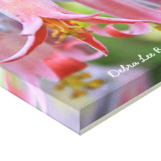 Cotyledon Flowers by Debra Lee Baldwin Canvas Print
