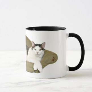 Couch potato cat cup