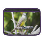 Couch's Kingbird of the Yucatan Sleeve For MacBook Air