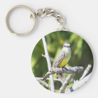 Couch's Kingbird of the Yucatan Keychain