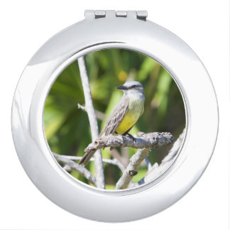 Couch's Kingbird of the Yucatan Compact Mirror