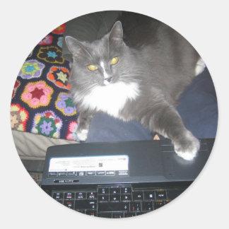 Couch Surfing Cat Classic Round Sticker
