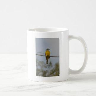 Couch's Kingbird Bird Nature Coffee Mug