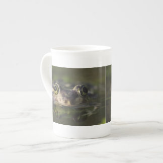 Couch's Spadefoot, Scaphiopus couchii, adult, Porcelain Mugs