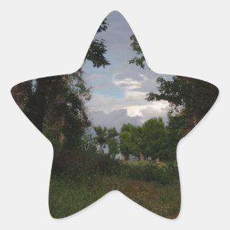 Coud formado escorpión en las maderas pegatina en forma de estrella