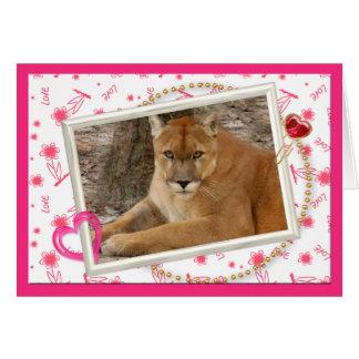 cougar-00016-65x45 felicitación