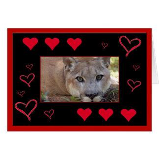 cougar-00021-65x45 tarjeton