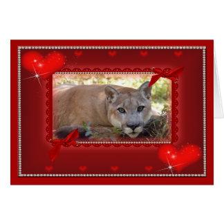 cougar-00071-65x45 felicitacion