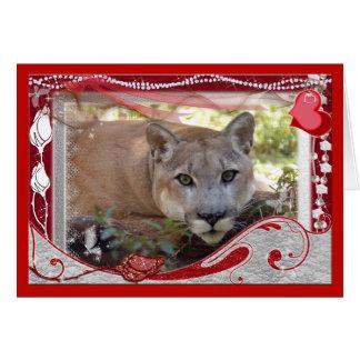 cougar-00101-65x45 tarjeta