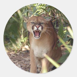 Cougar 001 classic round sticker