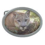 Cougar 006 belt buckle