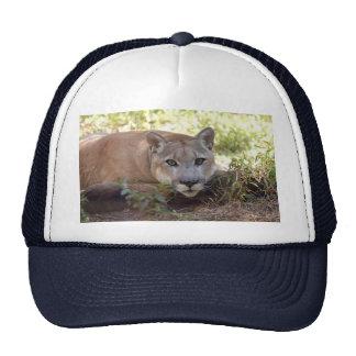 Cougar 006 trucker hat