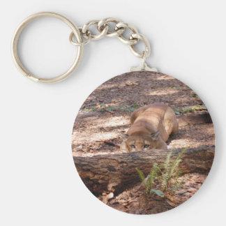 Cougar 010 keychain