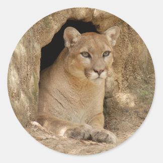 Cougar 011 classic round sticker