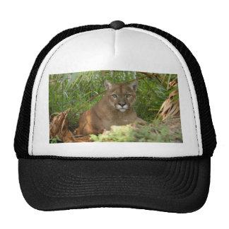 Cougar 016 trucker hat
