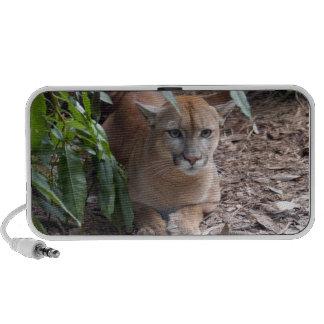 Cougar 018 notebook speakers