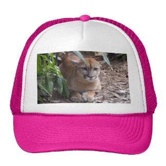 Cougar 018 trucker hat