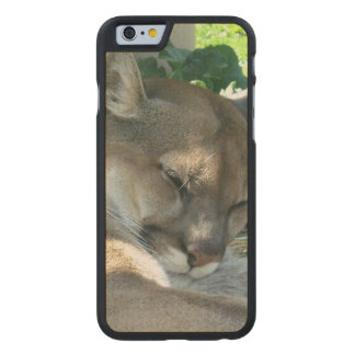 cougar-5 funda de iPhone 6 carved® slim de arce
