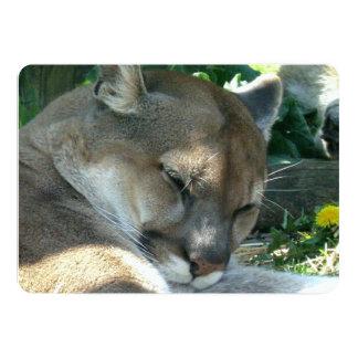 Cougar 5x7 Paper Invitation Card