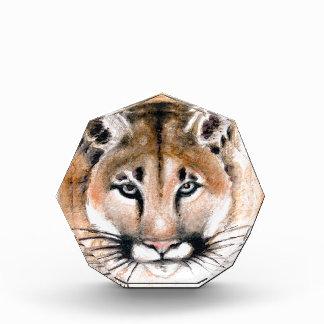 cougar acrylic award