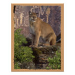 Cougar and Pictographs Print