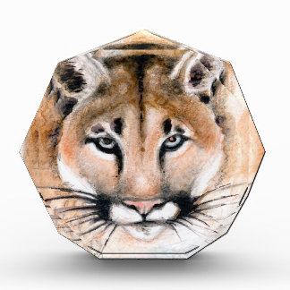 cougar award