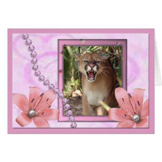 cougar-b-00082-65x45 felicitacion