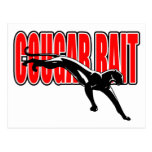 Cougar Bait. Fun design. Don't take it seriously. Post Card