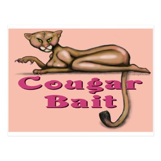 Cougar Bait Postcard