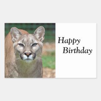 Cougar beautiful  happy birthday sticker, stickers