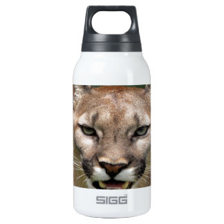 cougar confidence and peace insulated water bottle