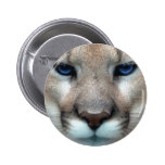 Cougar cub 2 inch round button