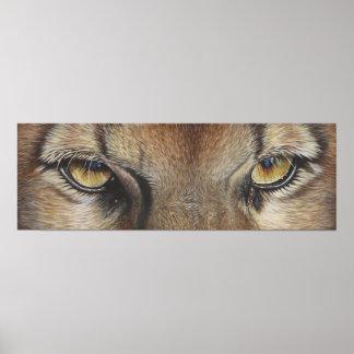 Cougar Eyes #2 Poster