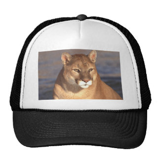 Cougar Face Trucker Hat