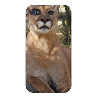 Cougar i iPhone 4/4S cases