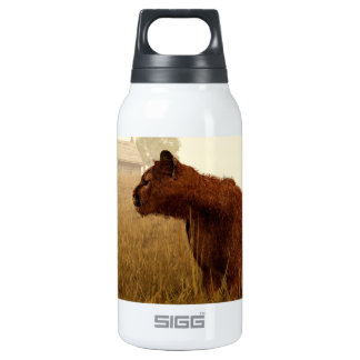 Cougar in a Field Insulated Water Bottle