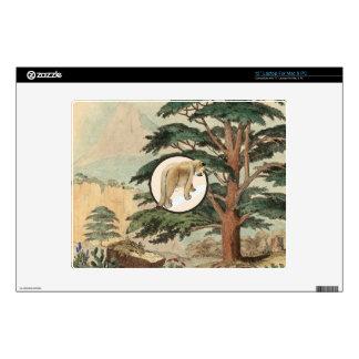 Cougar In Natural Habitat Illustration Decals For Laptops