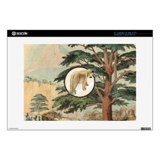 "Cougar In Natural Habitat Illustration 13"" Laptop Decals"