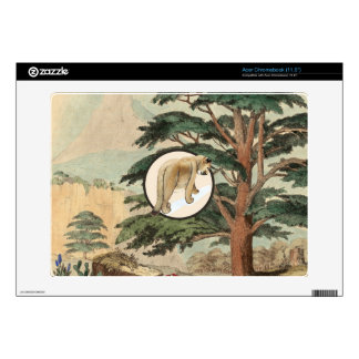 Cougar In Natural Habitat Illustration Acer Chromebook Skin