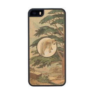 Cougar In Natural Habitat Illustration Wood Phone Case For iPhone SE/5/5s