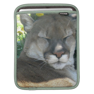 Cougar iPad Sleeve