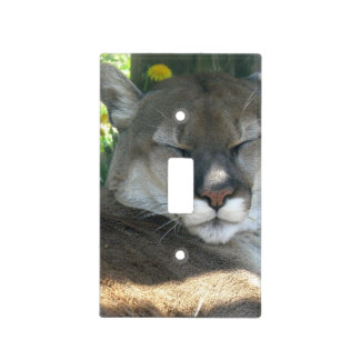 Cougar Light Switch Covers