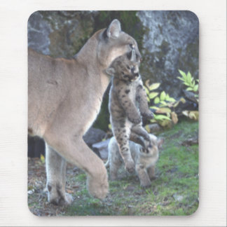 Cougar Mom and Cubs Mousepad