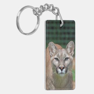 Cougar, mountain lion beautiful photo, gift keychain