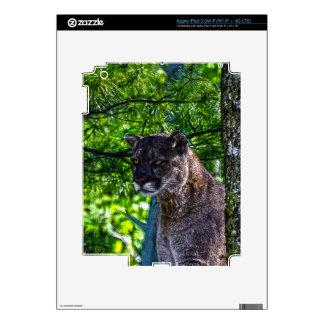 Cougar Mountain Lion Big Cat Art Design 6 iPad 3 Decals