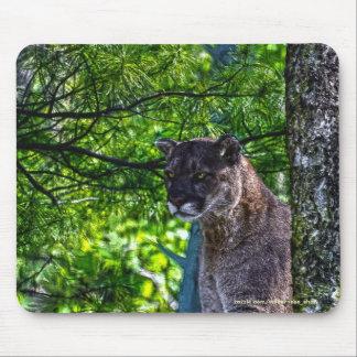 Cougar Mountain Lion Big Cat Art Design 6 Mouse Pad