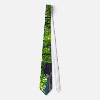 Cougar Mountain Lion Big Cat Art Design 6 Neck Tie